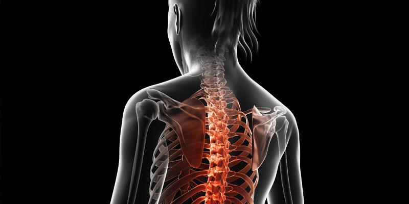 Vzhledem k volnému a přirozenému pohybu ošetřovaných částí těla a3be2553a0
